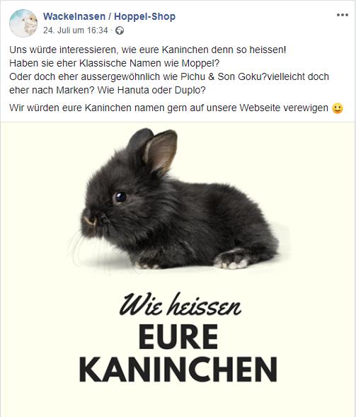 Kaninchen Namen