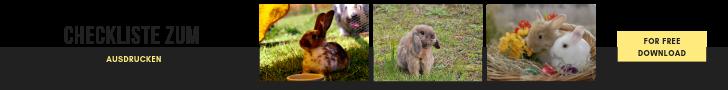 Kaninchen kaufen Checkliste zum ausdrucken